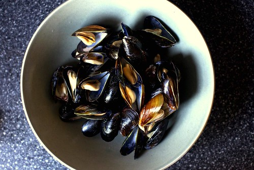 wine-steamed mussels