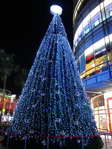 環球-店前聖誕樹.jpg