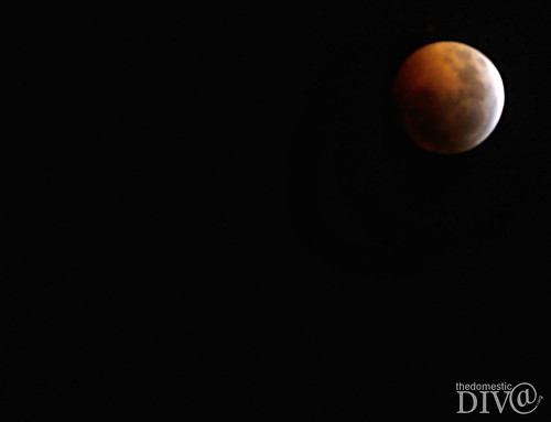 Lunar Eclipse the night of 12.20.10