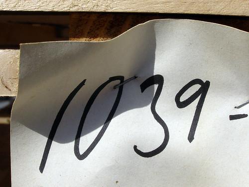 Basé sur les nombres, il suffit d'ajouter 1 au précédent. - Page 5 5281715749_6d2e0a2b11