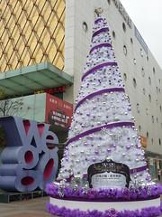 2010xmas - 薇格