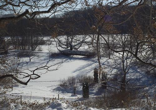 MN Landscape Arboretum
