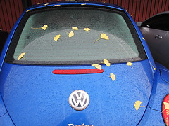 Volkswagen and Ginkgo leaves (Alika-Rikki) Tags: red rear windowleafleavesginkgoyellowvolkswagenbluebeetlebeautifulcolorsraindropdropsrenegadecraftfairsf