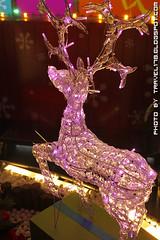 2010新光三越聖誕節_4374
