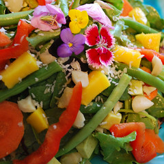 Green_Island_Salad