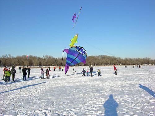 Winter Kite Festival 2009 big fish
