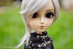 The New Boy (M. Ribeiro ) Tags: boneco doll eiji richt newboy taeyang outdoorshot taeyangricht