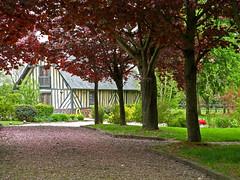 Encore une belle maison normande! (myvalleylil1) Tags: trees house france architecture eu arbres normandie maison printemps 2010 leuropepittoresque