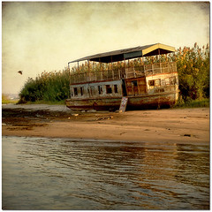 It was so old a ship... (pixel_unikat) Tags: africa old sun abandoned thanks for evening ship egypt rusty sunny textures textured rivernile playingwithbrushes skeletalmess