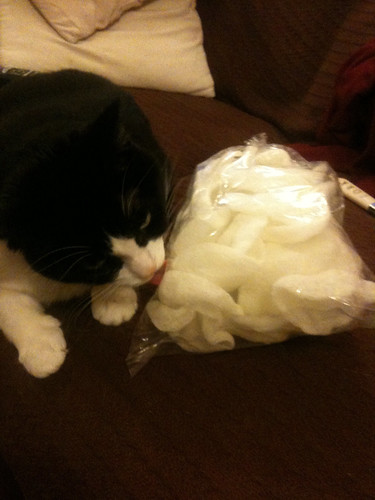 PAD: Prawn Cracker Thief