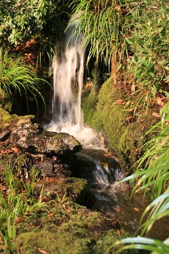 鶯啼庵の滝2