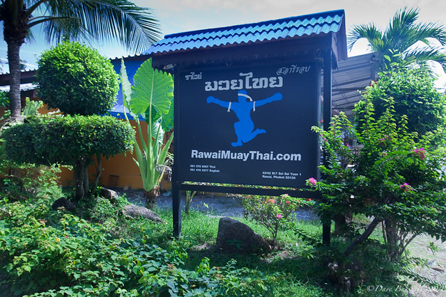 rawai muay thai sign thailand