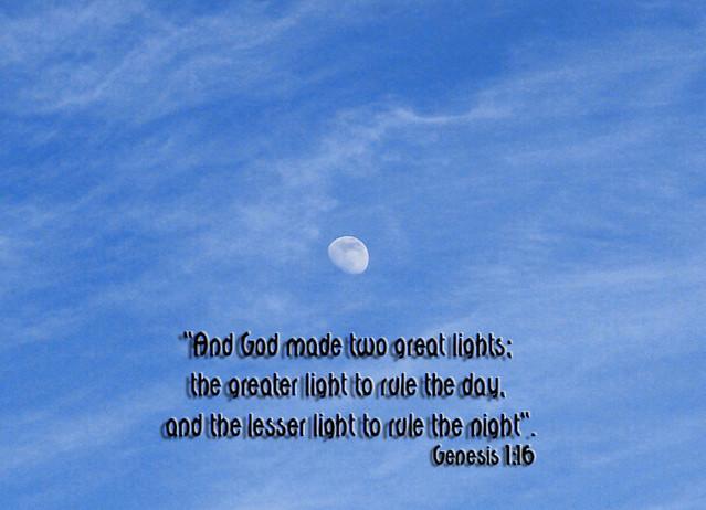 Scripture & Snapshot
