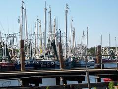 Bayou La Batre, Alabama (hunkyboudreau) Tags: shrimpboats bayoulabatre kodakeasysharedx6340