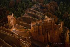 Sunrise Glow (AllenShirley1) Tags: sunrise utah glow canyon hoodoo bryce redrock brycecanyon brycecanyonhoodoo