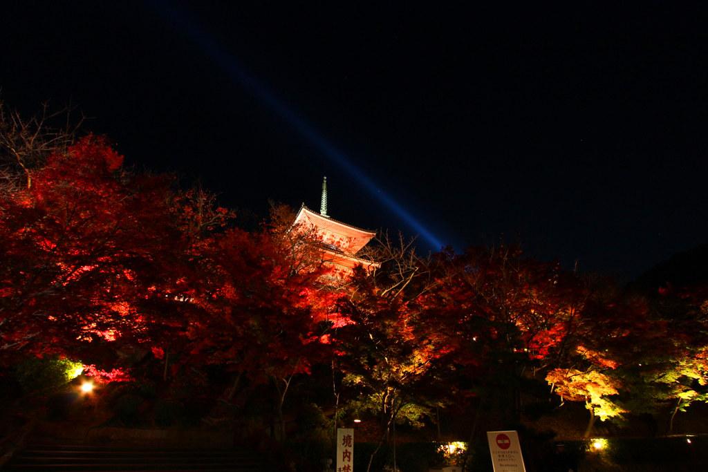 Kiyomizu-dera Illumination 2010  (12)