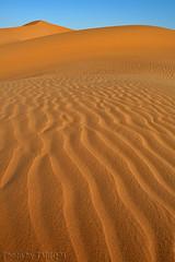 Desert Sand - Explore (TARIQ-M) Tags: texture landscape sand desert dunes riyadh saudiarabia hdr  canonefs1855        canon400d       thepowerofnow