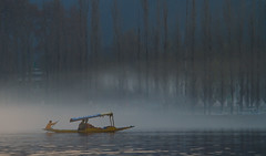 0228 A misty morning ride on a shikara--Dal Lake , Kashmir (ngchongkin) Tags: india niceshot harmony shiningstar nationalgeographic musictomyeyes favoritephotos thegalaxy beautifulshot superphotographer flickrsmileys peaceaward avpa flickrhearts flickraward flickrbronzeaward flickrsilveraward heartawards ultimategold diamondstars eperkeaward betterthangood dazzlingshots flickridol beautifulaward thebestshot highqualityimages spiritofphotography 469photographer photographerparadise artofimages visionaryartsgallery contactaward platinumpeaceaward youandtheworld pegasusaward flickrsgottalent bestpeopleschoice mygearandme fireworksofphotos fabulousplanetevo goldstarawardlevel1 2heartsaward flickrbronzetrophy photographyforrecreationgoldaward photographyforrecreationemeraldaward photographyforrecreationsilveraward photographyforrecreationbronzeaward highqualityimagequaifiedmembersonly digitographer internationalamateursofphotos theworldinthemyeyes artistsoftheyearlevel2