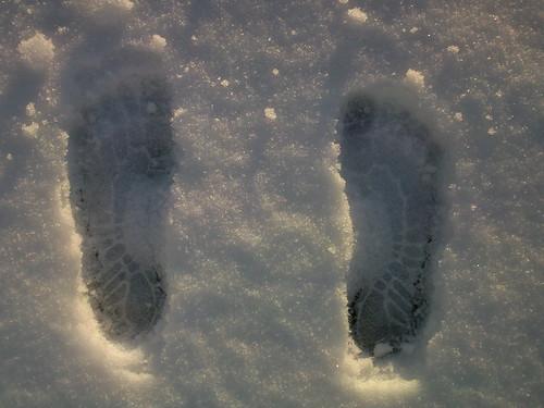 Snow Bikila