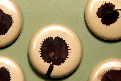 venus fly trap buttons
