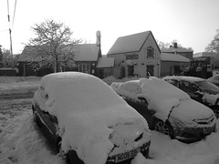 Snowed Up 015