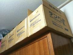 テンペの箱