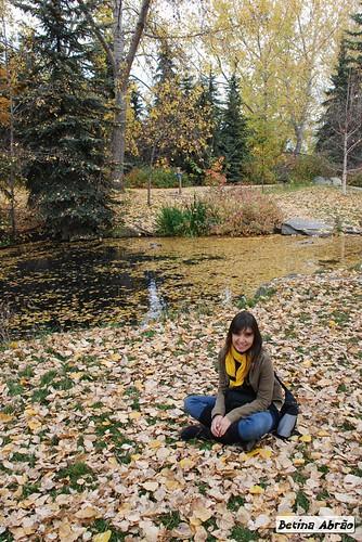 Calgary - Zoo