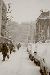 IMG_6450 (pellegrini_paris20) Tags: snowflake schnee white snow paris canon eos flake neige weiss blanc ville flocons flocon itsnows flocke flocken schneeflocke schneit flocondeneige souslaneige esschneit floconsdeneige ilneige 1000d fotocompetitionbronze