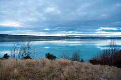 Lake Pukaki (borealnz) Tags: blue newzealand lake mountains grass evening canterbury m nz mackenziecountry shrubs lakepukaki glacial pukaki glaciallake borealnz