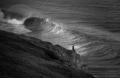 Storm Surf in black and white (gcquinn) Tags: ocean california travel favorite storm west beach colors composition spectacular landscape this interestingness big cool interesting scenery flickr surf waves place pacific very good geoff awesome marin diversity wave visit special adventure explore most 200 views winner stunning quinn planet headlands pro rodeo strong 100 300 geology 500 geoffrey northern incredible indo 1000 extraordinary comments excellence faved rated mywinner colorphotoaward superbmasterpiece ysplix amazingamateur theunforgetablepictures theunforgettablepictures betterthangood lesamisdupetitprince