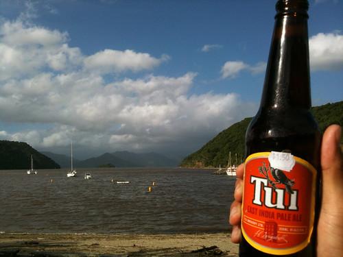 ピクトンの入り江とNZビールのTui
