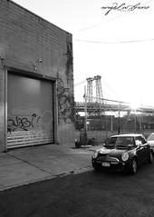 (AngieBphoto) Tags: newyorkcity newyork brooklyn juice ewok williamsburg dart trap backfat hert rk9