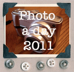 photoaday-button