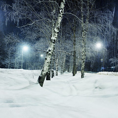 (dSavin) Tags: road snowflake trip blue winter shadow white snow lamp night dark lights wire alley frost track branch wind year artificial landing stop ten electricity suburb birch poles clearance prospect 2010  snowroad                 coldly fanari        backfilled   zavolga   coldtrip   sgroby artificialalley