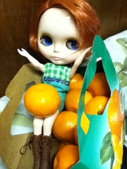 (clementines) are not the only fruit