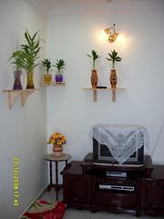 SDC10133 (Hosba Homestay) Tags: di homestay kedah jitra hosba