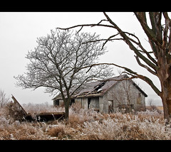 Old and Rural (robert_goulet) Tags: old morning winter ontario canada cold building tree rotting field fog composition barn digital rural junk frost december decay perspective foggy scenic frosty olympus scene micro vegetation aged milton decrepit aging zuiko 2010 ep1 disrepair wintry m43 zd mft fourthirds 1454mm mikecrough