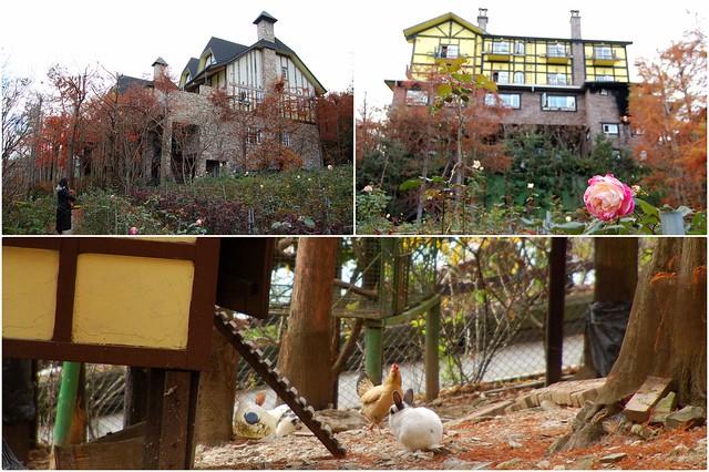 2011.01.08 南投 / 清境農場 / 普羅旺斯