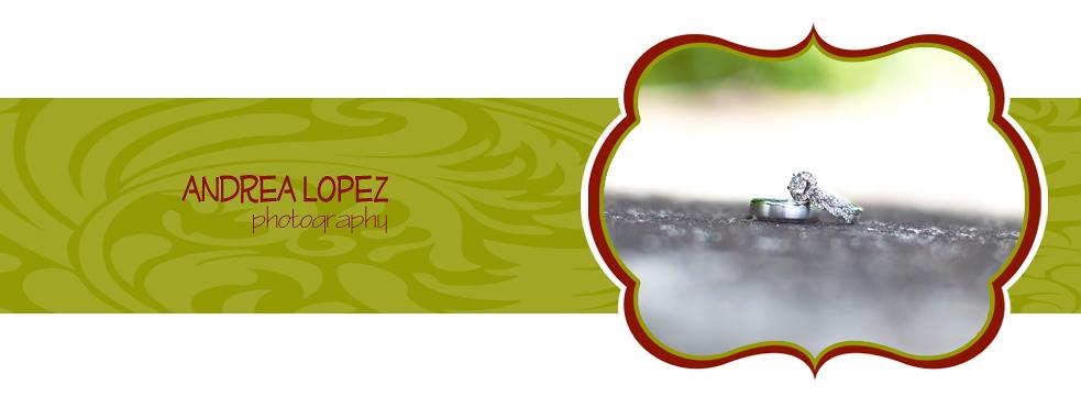 Slideshow Image 4