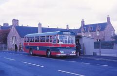 Highland Omnibuses T61 Muir of Ord (Guy Arab UF) Tags: bus buses scotland highlands 1972 ord muir willowbrook rossshire highlandomnibuses t61 fordr192 sst261k