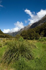 Mildford Sound, NZ (C) 2010