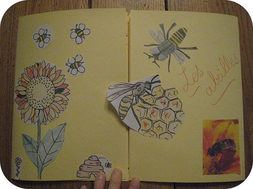 lapbook abeille 3