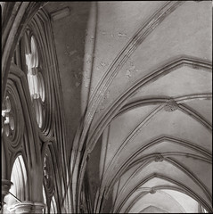 Cloisters (Alistair Haimes) Tags: film bronica duotone cloisters salisburycathedral 80mm epsonv700 filmphotographypodcast gettyimagesuklocation