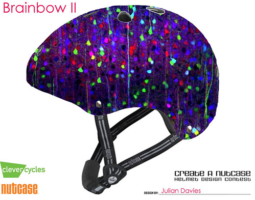 Brainbow II