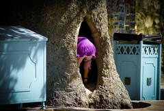 The Tree (Amsterdam Today) Tags: street summer urban france tree de photography julie candid  july cte boom frankrijk provence der grimaud 19 baum var morpheus draguignan larbre 2010 dazur lalbero k20d grimmaud schaagenpentax