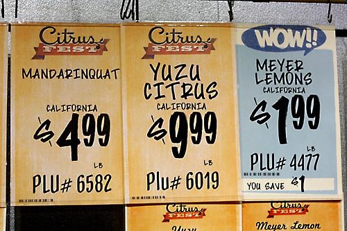 citrus signage