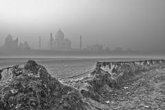 Taj Mahal Agra India (franchab) Tags: india taj mahal inde agara wwwfranchabphotographefr