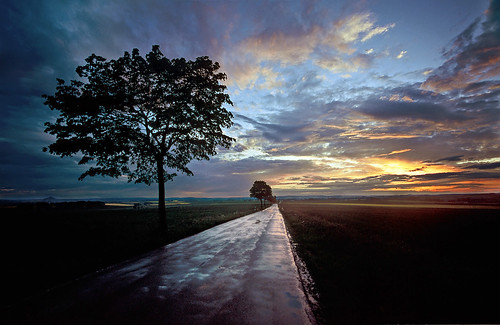 A road reflecting the evening sky I - Copyright by Martin Liebermann