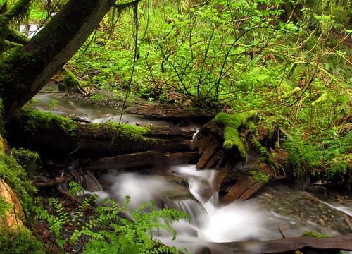 Silken waterfall