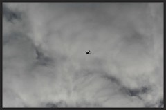 Flight (Zelda Wynn) Tags: bw nature weather clouds plane blackwhite cloudy artgalleryofnsw cloudscape troposphere inspiredbyalfredstieglitz zeldawynnphotography